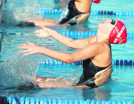 Lamorinda Weekly Campo Swimming Shines In Palo Alto